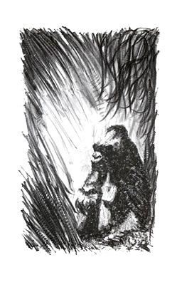 Gorilla Lithograph